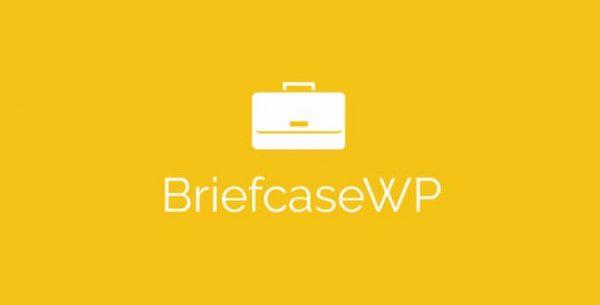 افزونه Briefcase Elementor Widgets